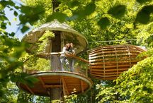 Treehouses / by National Home Gardening Club