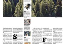 newspaper layouts / inspiration for Publication Design students