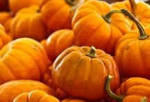 Fall Celebration | Home for the Holidays