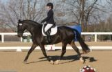 Susan and Beau.  Horse and Rider Awareness / These videos show the progress of Susan and her horse Beau.  They compete in dressage.  Last year they competed at the USDF Finals in the Training level Championships with a score of 70.20%.  This earned them a 4th place out of 27 US Regional Champions.