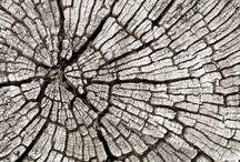 Tendance : Vu du ciel - Ode à la nature / De l'infiniment grand à l'infiniment petit, la nature se transforme au fil des saisons. Cette histoire de la vie fait éclore les bourgeons d'idées de nos designers et confère à leurs créations textiles une certaine idée de la naturalité.