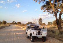 Land rover series 2 / In the Kalahari