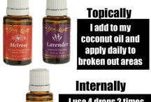 EO Lotion Recipes / by Michelle Moore