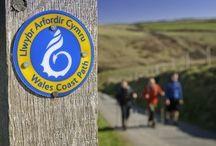 Route Cotière du Pays de Galles / http://blog.alainntours.fr/radonnees-au-pays-de-galles-wales-coastal-path.html