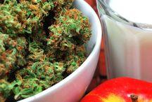 Cannabis Foto / Konopie w życiu codziennym.  Zdjęcia konopi autorstwa Ambasadorki.