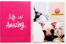:: scrapbooking :: / by Emily Hall