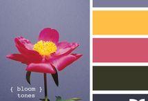 colores / by batiz falla