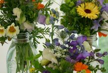 Colors / Flowers colors