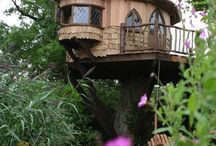Tree Houses / Tree houses from around the  World.