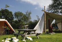 Camping & glamping Holland / Small, intimate campings & glamping in the Netherlands