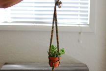 Eco Friendly DIYs / by WeWOOD USA