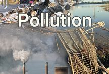 Pollution / Pollution around the world is choking us, wildlife and the environment.