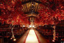 Réception.& Wedding- RED / Le glamour et la chaleur du rouge pour donner de la couleur aux réceptions et aux mariages / by Sanaa Bench