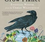 Books Worth Reading / by Robin Munro