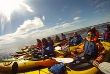 Actividades en Punta Arenas