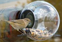 Birds/feeders and houses
