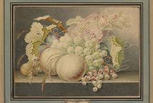 Jan van Os (1744-1808) / Professions: Früchtemaler; Painter; Flower painter; Still life painter; Naval painter