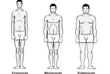 body types and nutrition