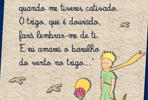♡The little Prince