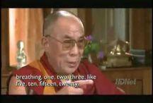Dalai Lama / Dalai Lama Quotes