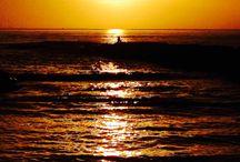 Il mare / La mia passione, il mio mondo