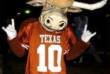 Texas Longhorns / by Raylyn Means