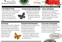 what is biology / About Biology
