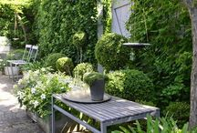 Garden green and white