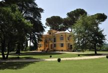 Lazio - Viterbo