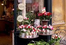 Amy's Paris