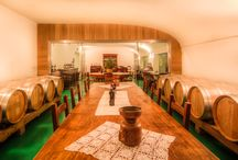 Winery / Our cellar, with tasting room and meeting hall