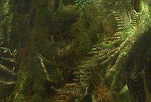 trädgård skogsmarksvägen