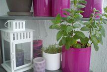 Floristy - Balkonowy ogród i zioła