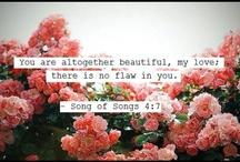 Truth  / God's word.