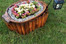 My Garden / Flowers