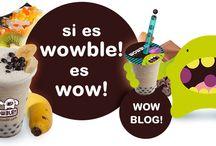 INAGURACION DE WOWLE!
