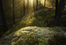 Fotografie / atemberaubende Naturschönheiten