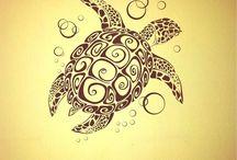 Schildkröte Bildideen