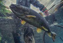 Flyfishing Art