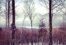 Adirondacks, New York / Snowy views from Schroon Lake, NY.