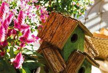 Minyatür evler ve kuş evleri
