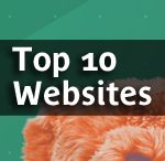 100% websites / Design online through a top commercial website.