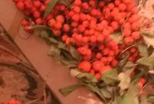 Rowan(Sórbus) / Sórbus — род относительно невысоких древесных растений семейства Rosaceae порядка Rosales.
