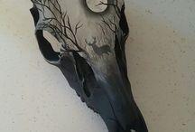 bones / animal bones, scull, art
