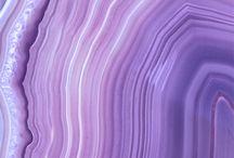 Fundos purple