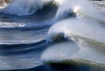 Surfs up / by Wayne Harker-Gill