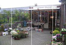 Gezellige bloemenwinkel