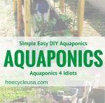 Aquaponic garden ideas