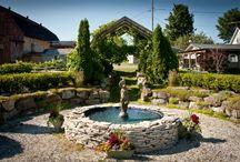 Vignoble / Vineyard / Le vignoble La Bauge, situé à Brigham, tout près de Cowansville, Granby, Sutton et Bromont.