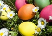 Easter 2014 / Easter 2014 is a big festival for Christians who lives in USA, UK, Australia and other parts of world.On this Day we have Easter Pictures, Crafts Easter Quotes